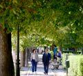 Encuentro Comunidad y Ayuntamiento de Madrid en el parque del Retiro