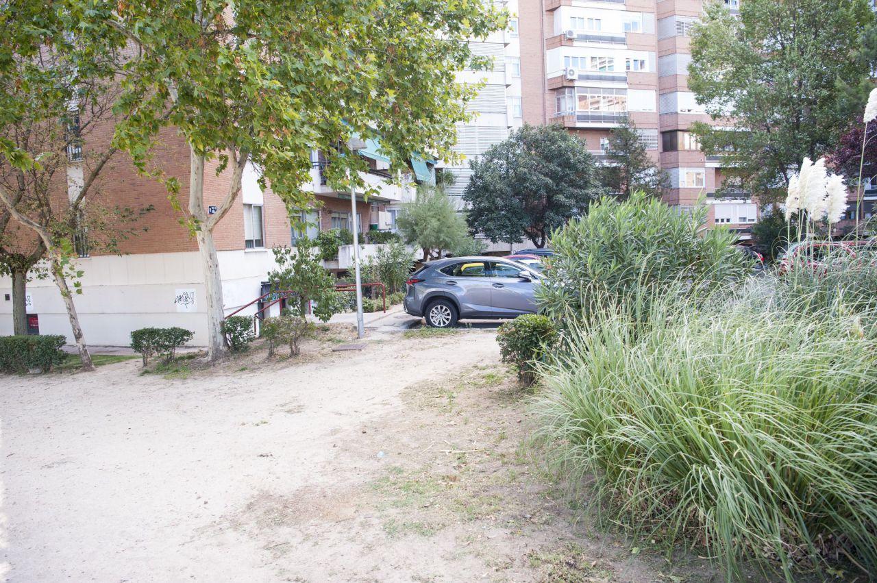 Estado de los jardines exteriores de la colonia, de cuyo mantenimiento reclaman los vecinos se ocupe el Ayuntamiento.