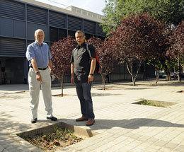 Abandono de zonas verdes, según el PSOE
