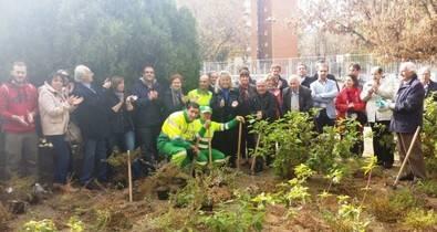 Plantación de árboles en Dionisio Ridruejo