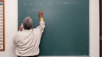 Se buscan profesores