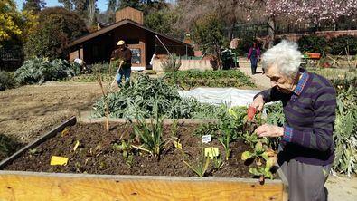 La Cabaña del Retiro ofrece actividades para todos.