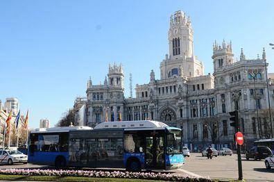 Los autobuses gratuitos al centro se estrenarán en febrero