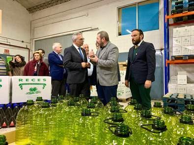 La Comunidad reitera su compromiso con la industria olivarera y aprueba dos millones de euros contra la bacteria 'Xylella Fastidiosa'