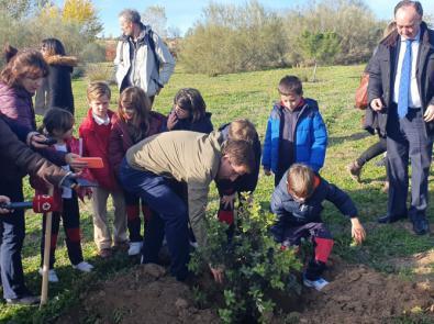 Almeida planta 60 árboles en Valdebebas