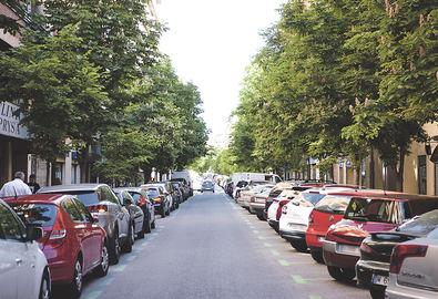 Mucho verde para enmarcar a la 'calle de la salud'