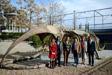 La escultura interactiva del esqueleto de una ballena azul, que podrá visitarse hasta el próximo 17 de diciembre, se encuentra situada en la explanada exterior de la Fundación Canal.