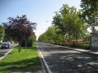 El Barrio Aeropuerto tendrá nuevas zonas verdes.