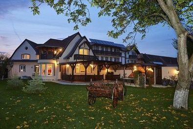 Situado en el corazón de las montañas nevadas y a pocos kilómetros del Castillo de Bran, el hotel de 5 estrellas Conacul Ambient ofrece un ambiente de lo más pintoresco, permitiéndote sumergirte por completo en la leyenda del auténtico Drácula.
