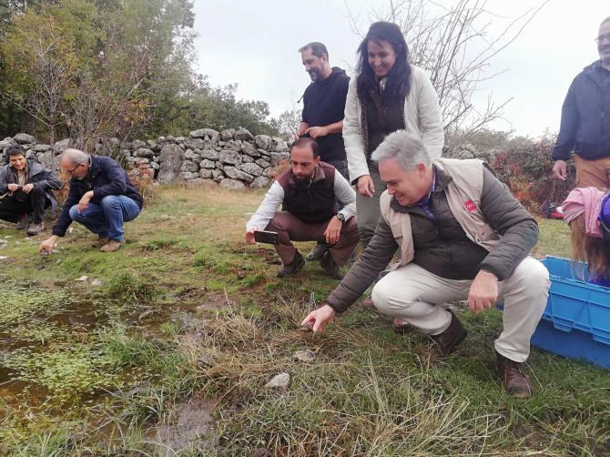 La Comunidad apuesta por la conservación, protección y cuidado del galápago europeo