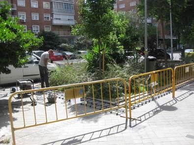 Segunda vuelta para las zonas verdes de Parque de las Avenidas
