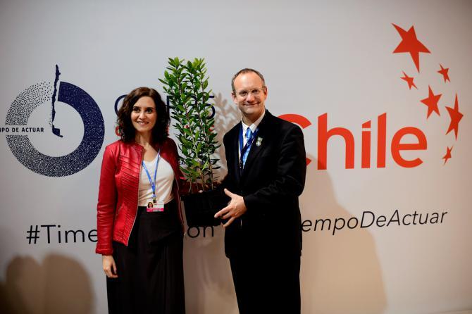 La Comunidad dona madroños a Chile en la COP25 como símbolo de hermanamiento ambiental