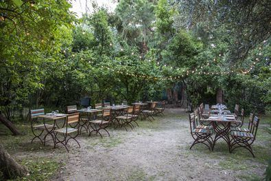 El Olivar de Castillejo, oasis 'gourmet' estival