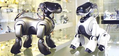 Operario de robots, una nueva profesión