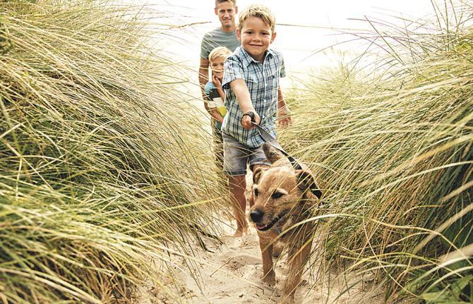 Con la finalización del curso y la llegada de las vacaciones, los niños sufren cambios de rutinas y actividades que les afectan