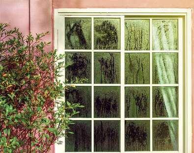 Con la llegada de la primavera aparecen las humedades en el hogar