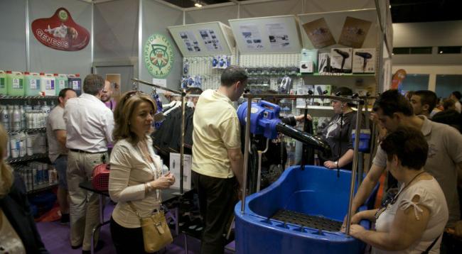 Juegos interactivos, talleres de peluquería y exhibiciones, en expo Mascota