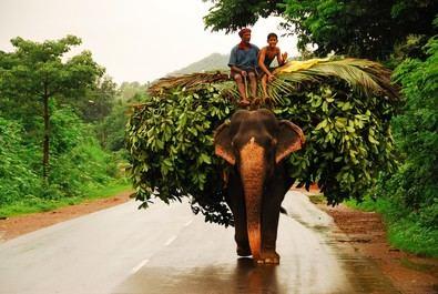 Goa, India con aroma portugués