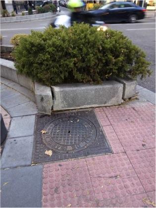 ¿Qué les pasa a las jardineras en Salamanca?