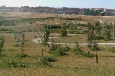 Un plan para el parque de la Gavia