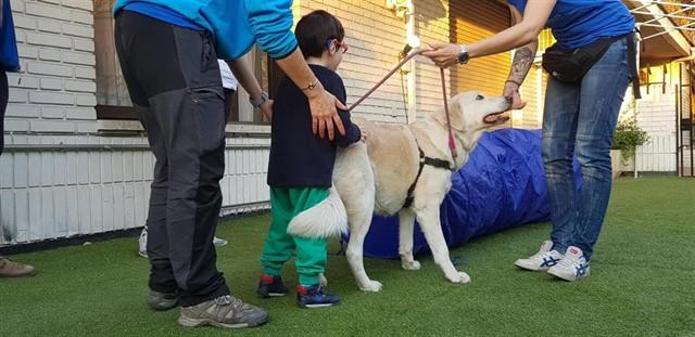 El proyecto, denominado 'Un niño, un perro feliz', pretende ofrecer apoyo a los padres y cuidadores de menores y su objetivo es constatar la evolución de los niños mediante la interacción con los canes.